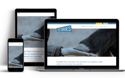Website Praktijk Bries Veenendaal