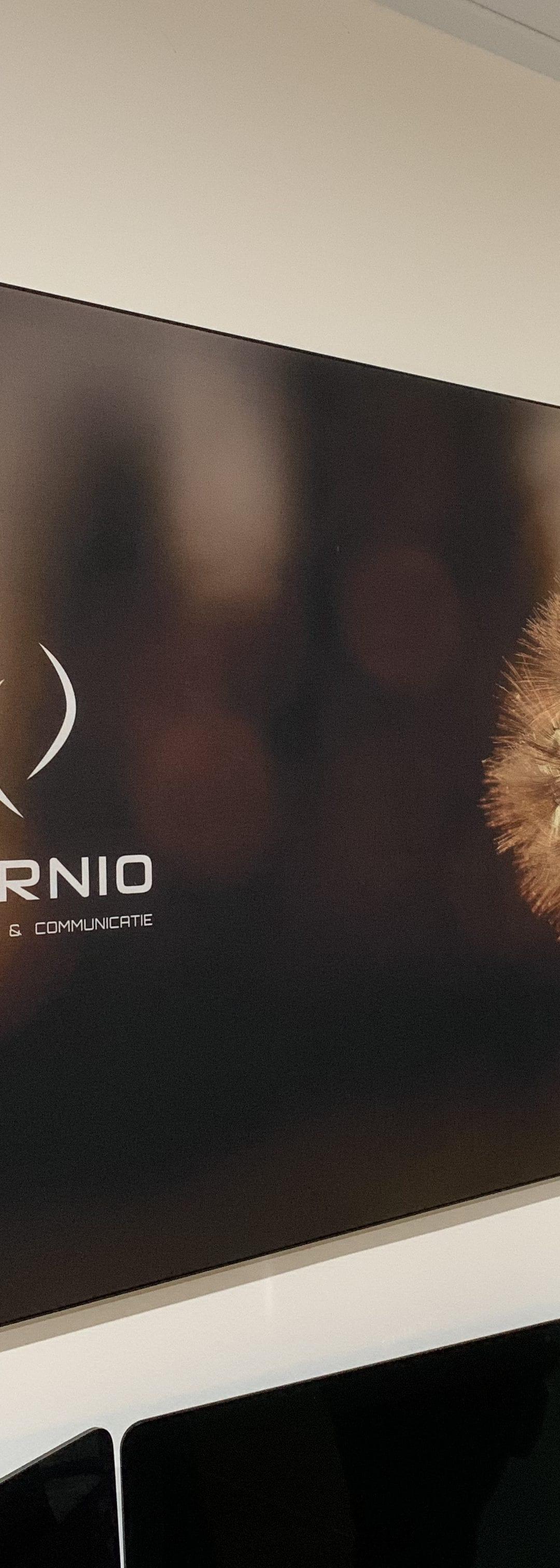 Burnio groeit en ontwikkelt
